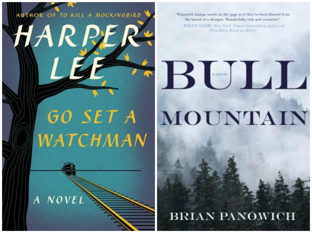 Go Set A Watchman, Harper Lee, Bull Mountain