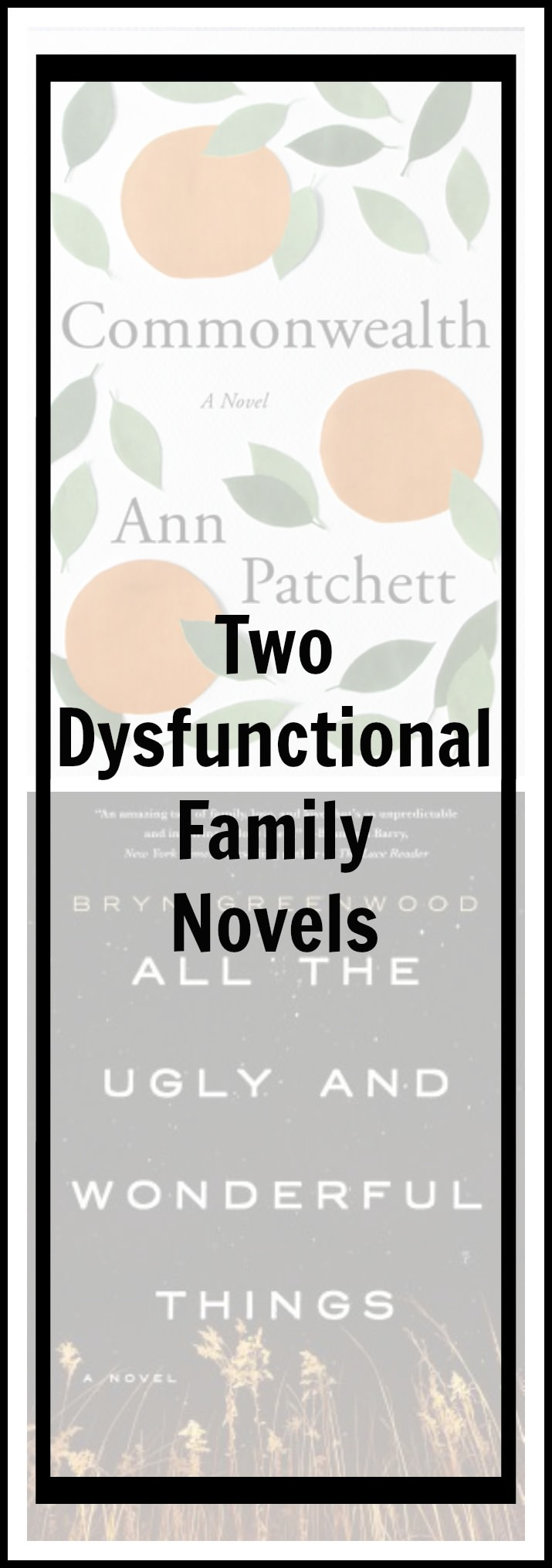 Dysfunctional families are one of my favorite topics to read about in fiction...and I came across two winners this Fall.