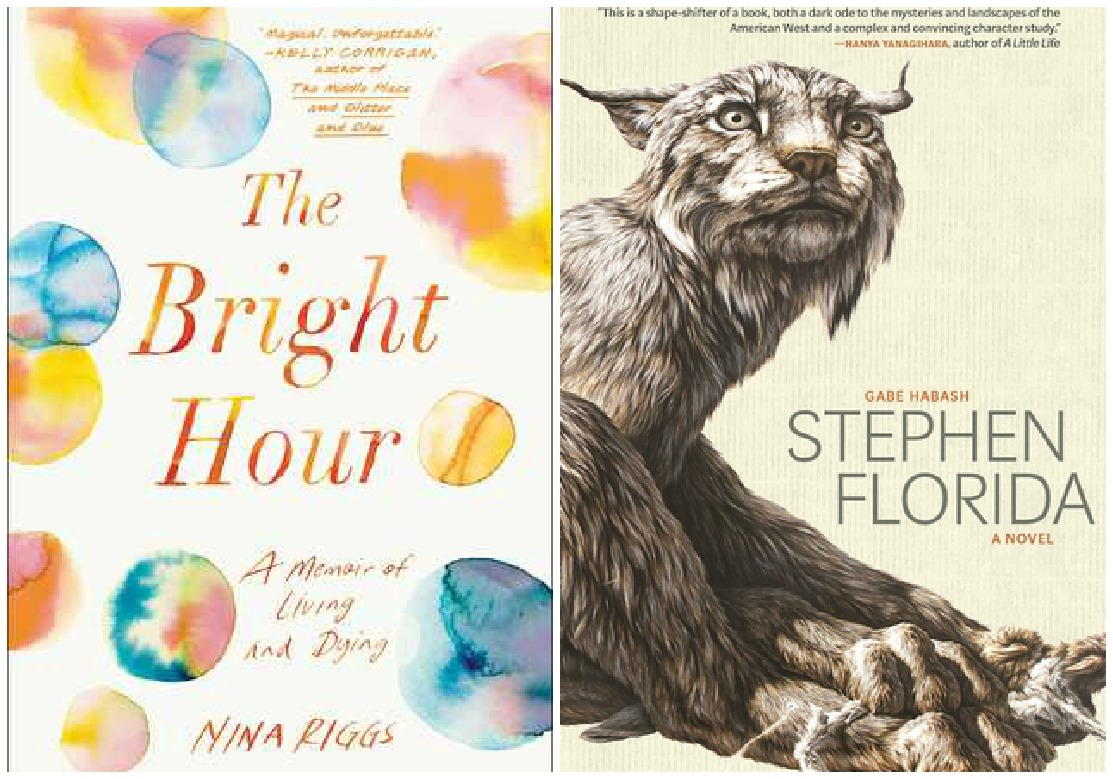 The Bright Hour by Nina Riggs, Stephen Florida by Gabe Habash