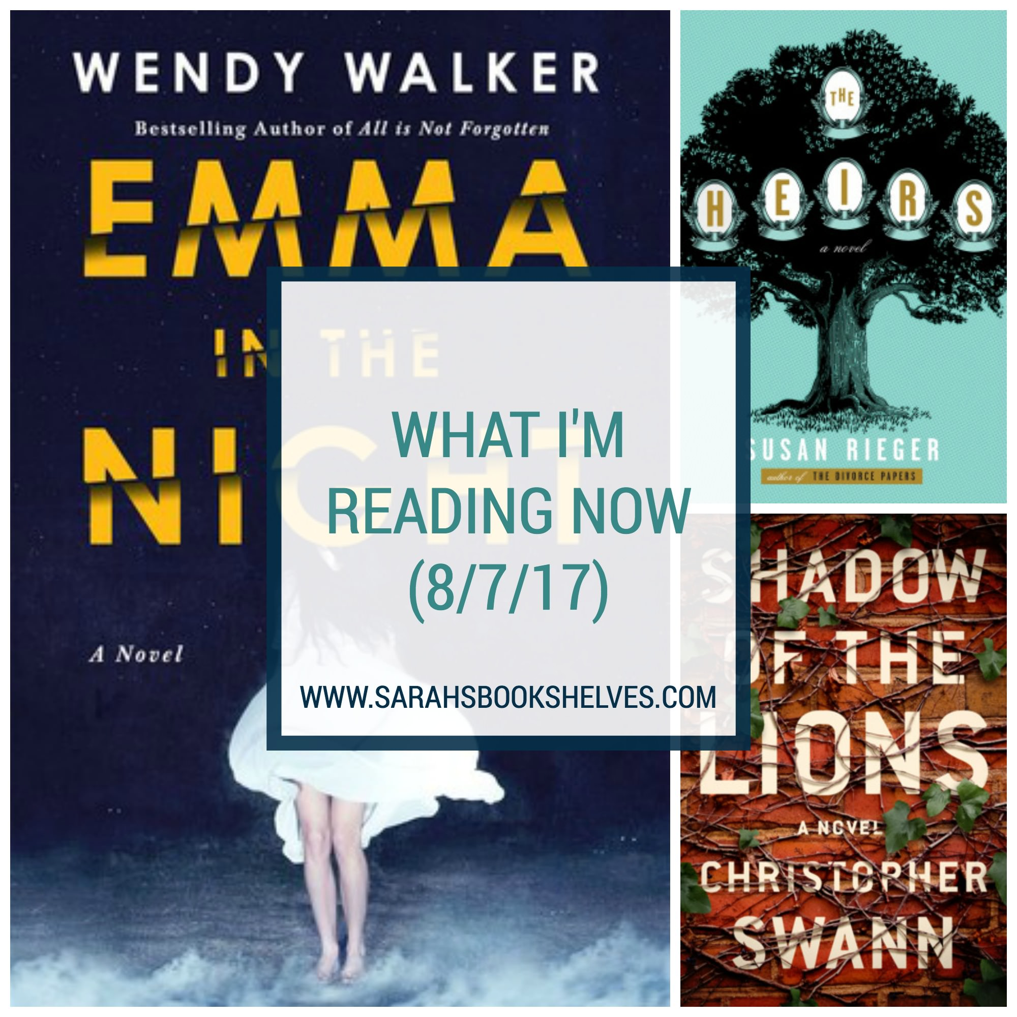 What I'm Reading Now (8/7/17): I've got 3 fantastic summer books for your final vacation! Emma in the Night is the best thriller I've read since Gone Girl, Shadow of the Lions is an intriguing campus mystery, and The Heirs is a well written wealthy Manhattan family drama.