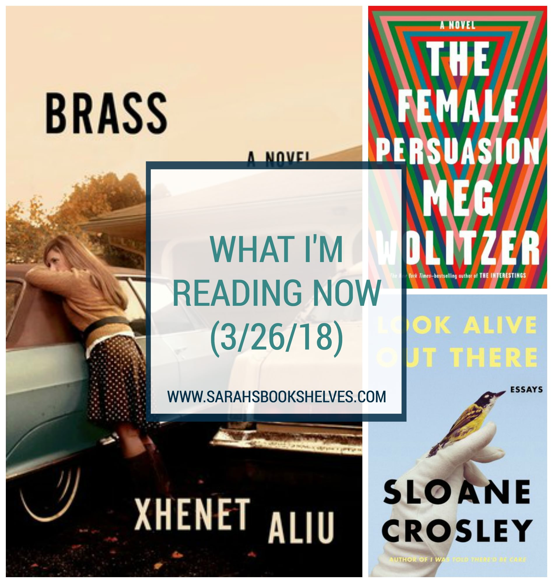 What I'm Reading Now (3/26/18): Just finished The Female Persuasion by Meg Wolitzer and Look Alive Out There by Sloane Crosley. Now reading Brass by Xhenet Aliu. #reading #book #bookish #bookworms #booklovers