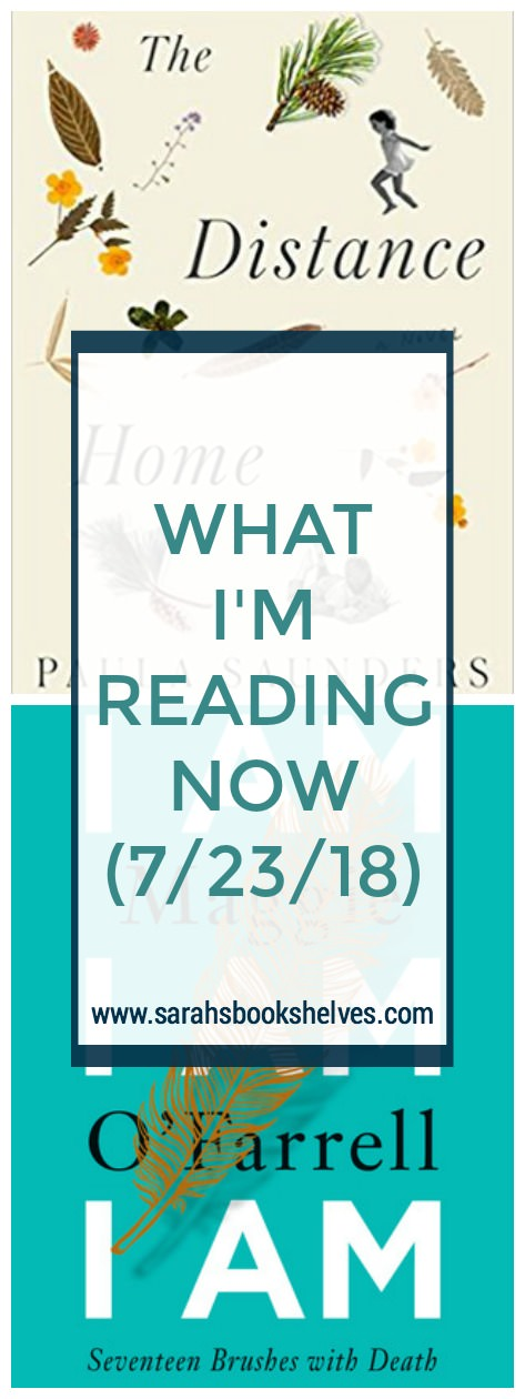 What I'm Reading Now (7/23/18): I got started on August books, which are a bit more literary than the summer reading I've been doing for the past couple weeks. I'm also reading a memoir that I predict will be 5 stars for me! #reading #books #bookish #bookworm #booklover #bookstagram